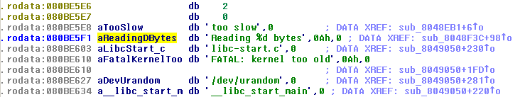 IDA screenshot showing the string in the read-only data segment